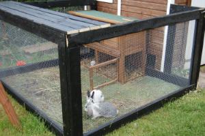 Kanin løbegård byg selv | Møbler til terrassen og haven